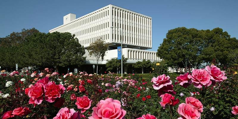 Article Image Deborah Alencar, Brasil: cursou Finanças Internacionais na Universidade da Califórnia - Irvine Extension - em Irvine, Califórnia