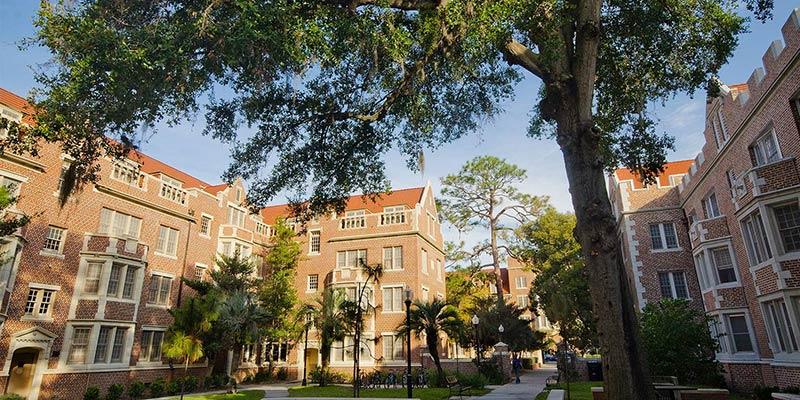 Article Image Ana Lúcia Silva: estudante brasileira, está cursando inglês no Instituto de Língua Inglesa (ELI) da Universidade da Flórida (University of Florida), em Gainesville, Flórida