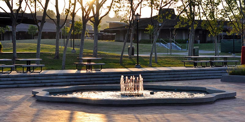 Article Image 椎野 好香さん — Foothill College(フットヒルカレッジ)University of California Berkeley(カリフォルニア州立大学バークレー校)での留学体験