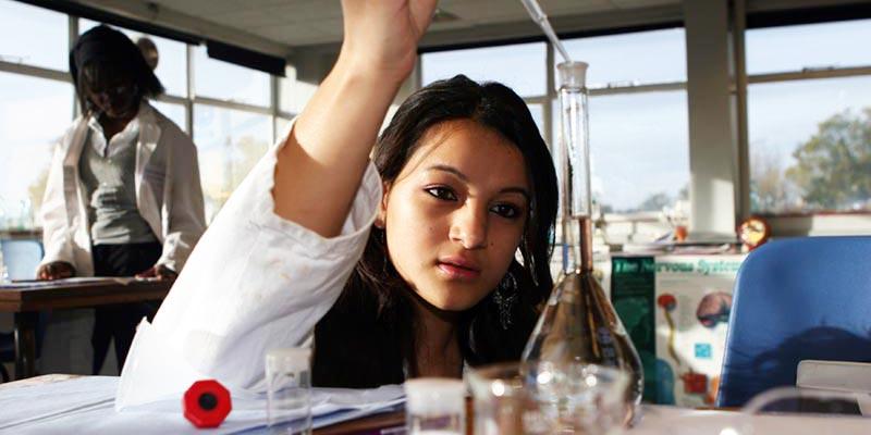 Article Image Programa de cursos de nivel universitario