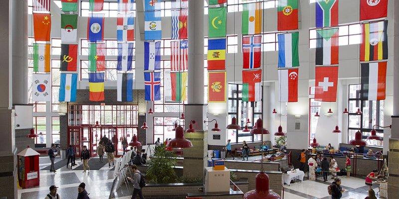 Article Image Irina Peseleva dari Rusia: Belajar Bahasa Inggris di Program Bahasa Inggris Intensif dan Psikologi di Temple University