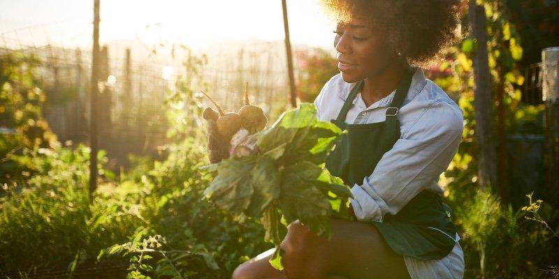 Article Image La creación de un mundo sustentable