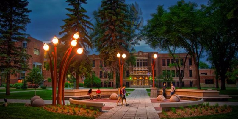 Article Image Mohammad Omar from Jordan: Studying Business Management at Minnesota State University Moorhead