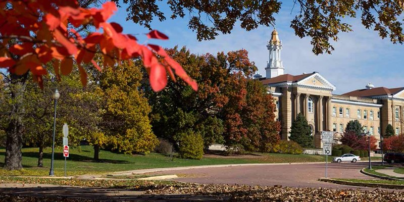 Article Image Elisabeth Kulmer จากออสเตรีย: นักศึกษาระดับบัณฑิตศึกษากำลังศึกษาสาขาบริหารธุรกิจที่ Western Illinois University