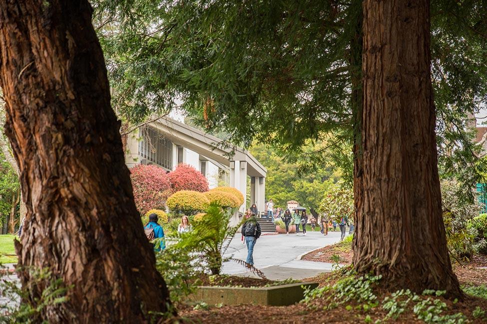 Humboldt State University  gallery image7