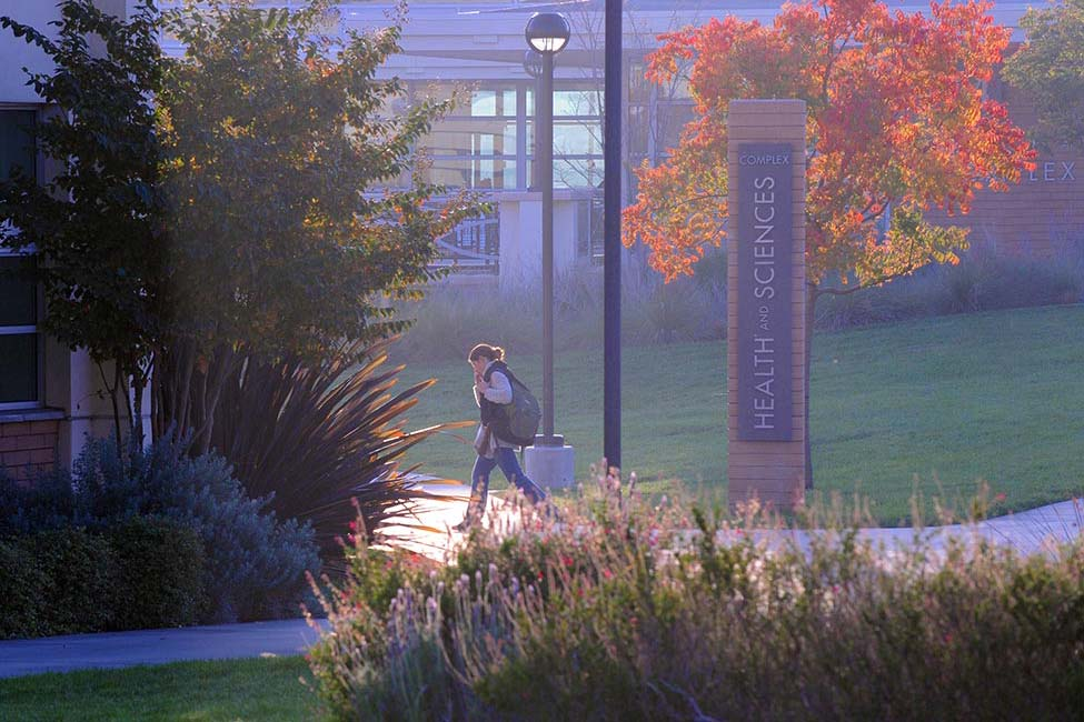 Grossmont College / ACE American Collegiate English   gallery image4