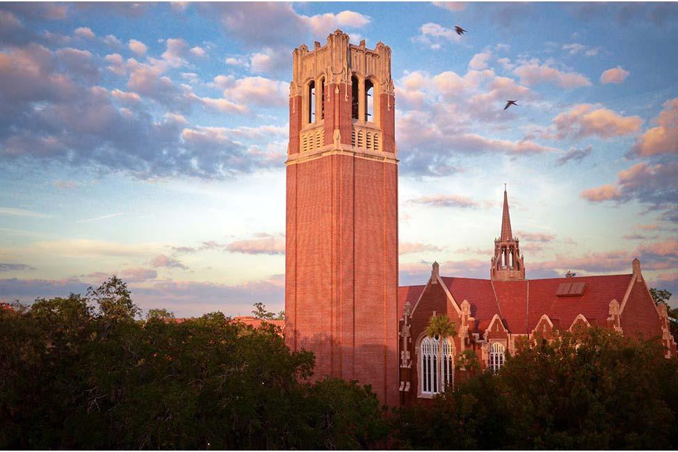 Image of University of Florida ELI English Language Institute