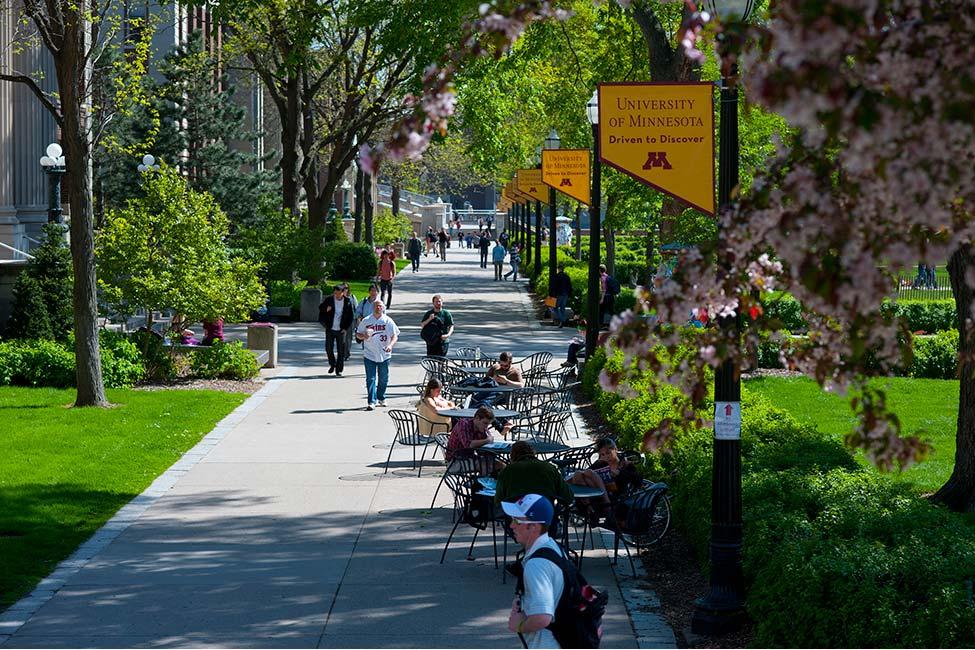 University of Minnesota Minnesota English Language Program (MELP) gallery image3