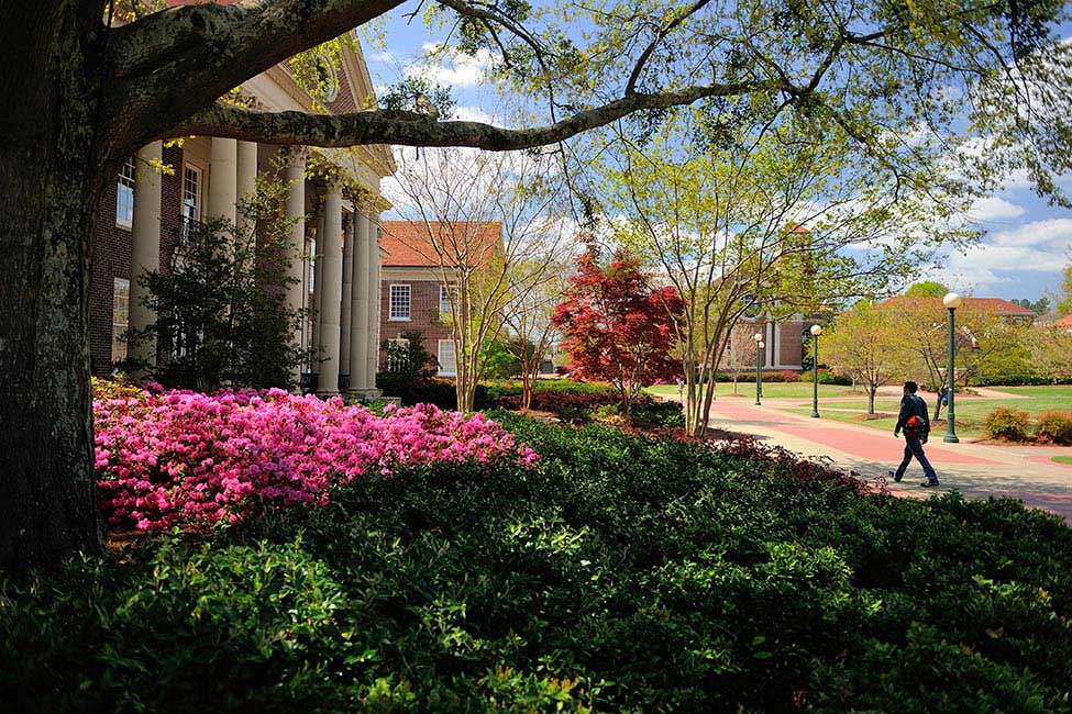 University of Mississippi  gallery image6