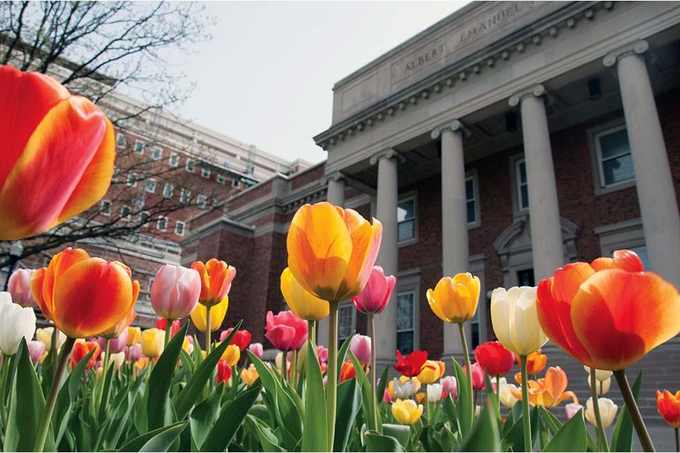 Image of University of Dayton