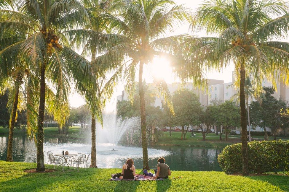 Florida International University Global First Year  gallery image7