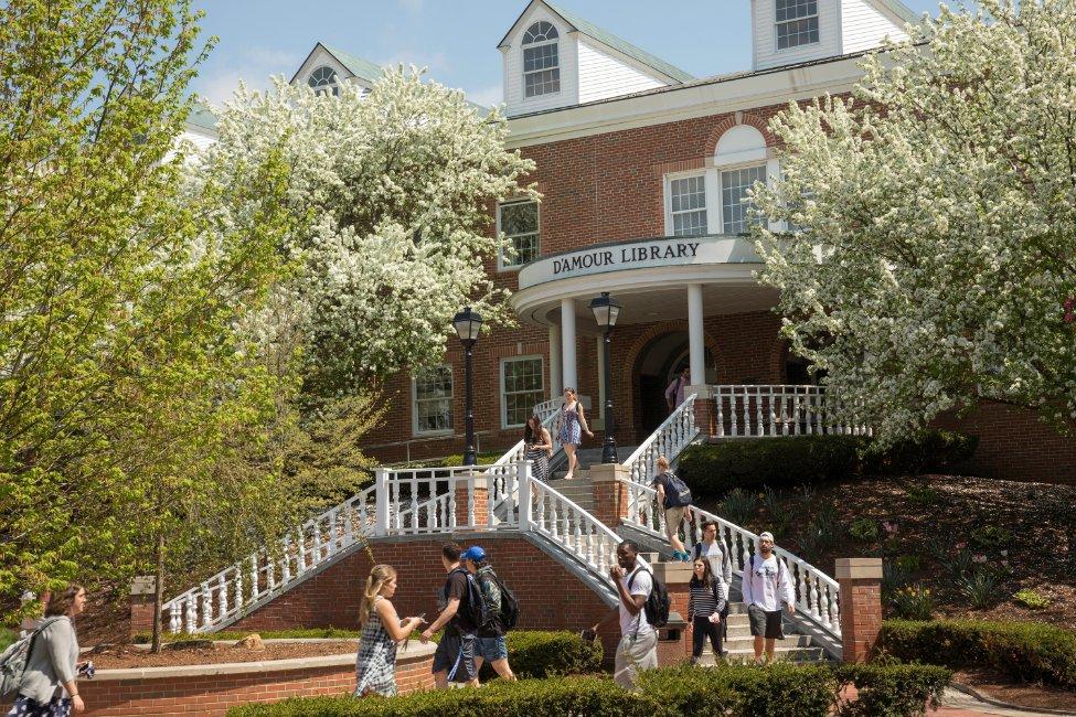 Western New England University  gallery image2