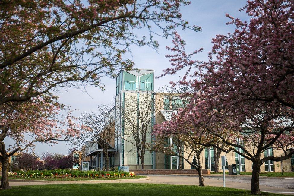 Saint Charles Community College  gallery image5