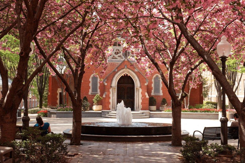 Georgetown University English Language Center  gallery image3