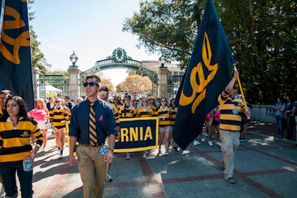 Berkeley Global  gallery image5