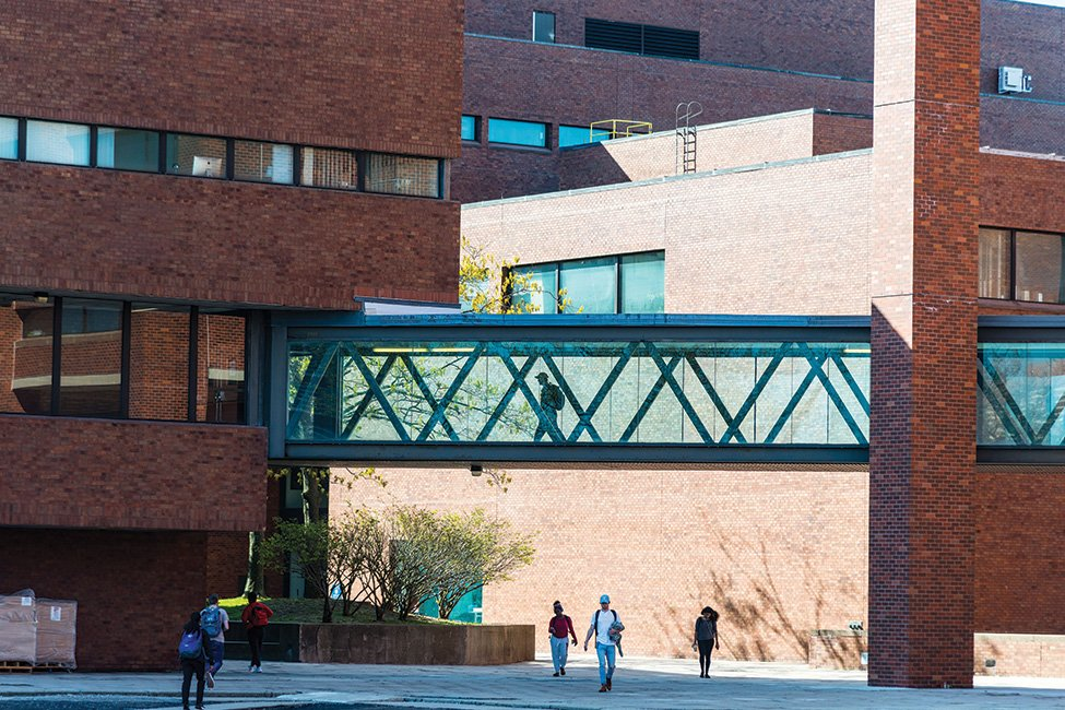 University of Massachusetts Boston – International Program  gallery image5