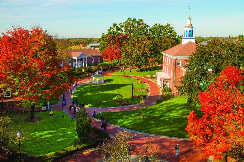 Western New England University  gallery image4