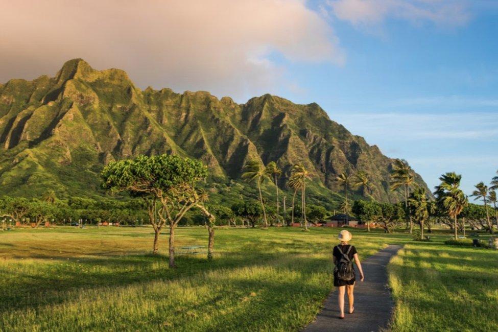 Study Hawaii  gallery image1