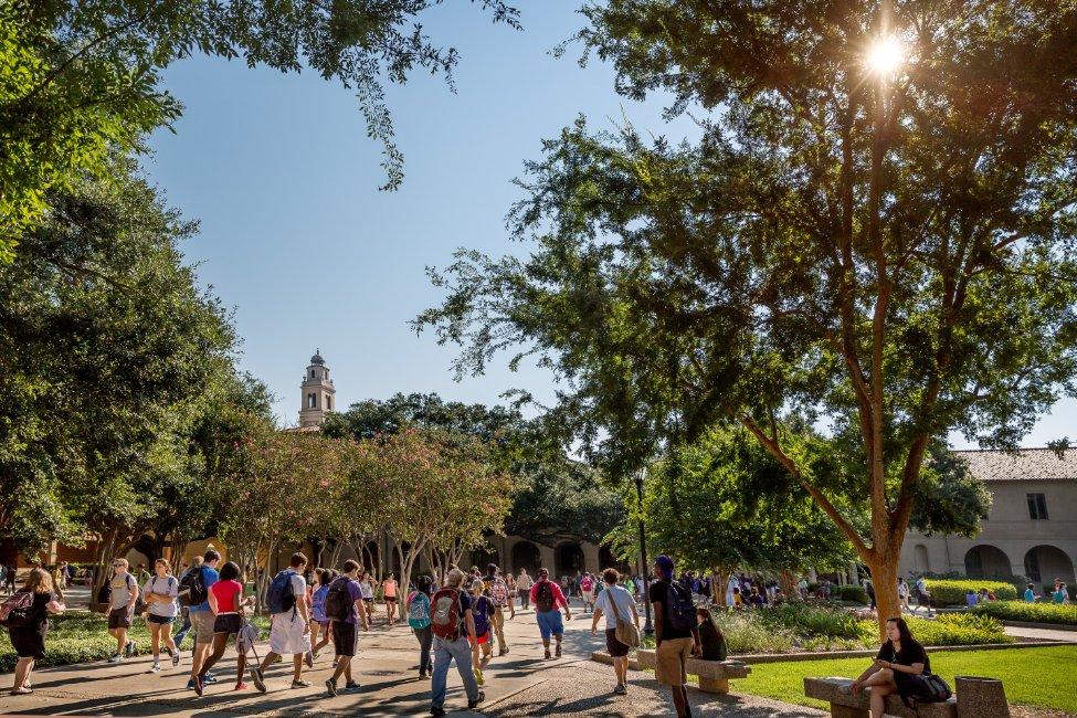 Louisiana State University – Global Pathway  gallery image4