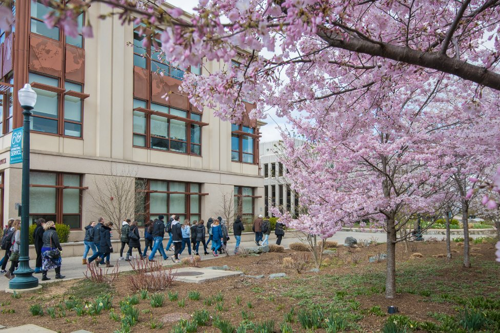 Image of American University – International Accelerator International Accelerator