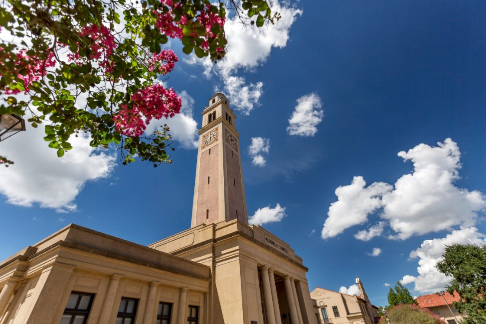 Louisiana State University – Global Pathway  gallery image7