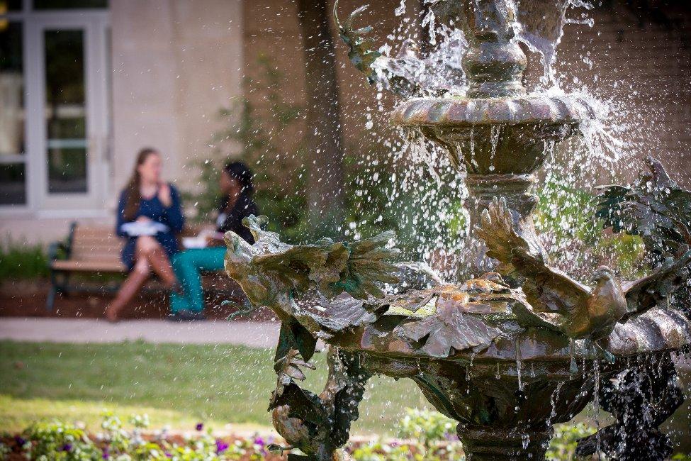 University of South Carolina  gallery image3