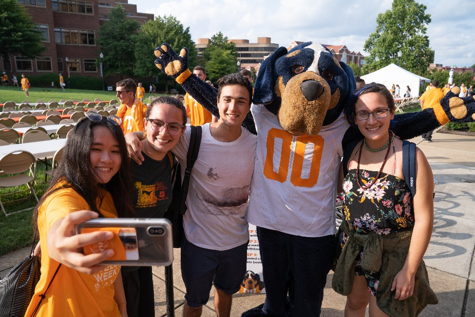 University of Tennessee at Knoxville  gallery image2