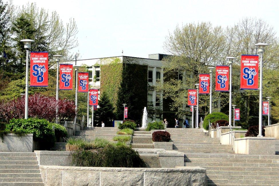Stony Brook University  gallery image2
