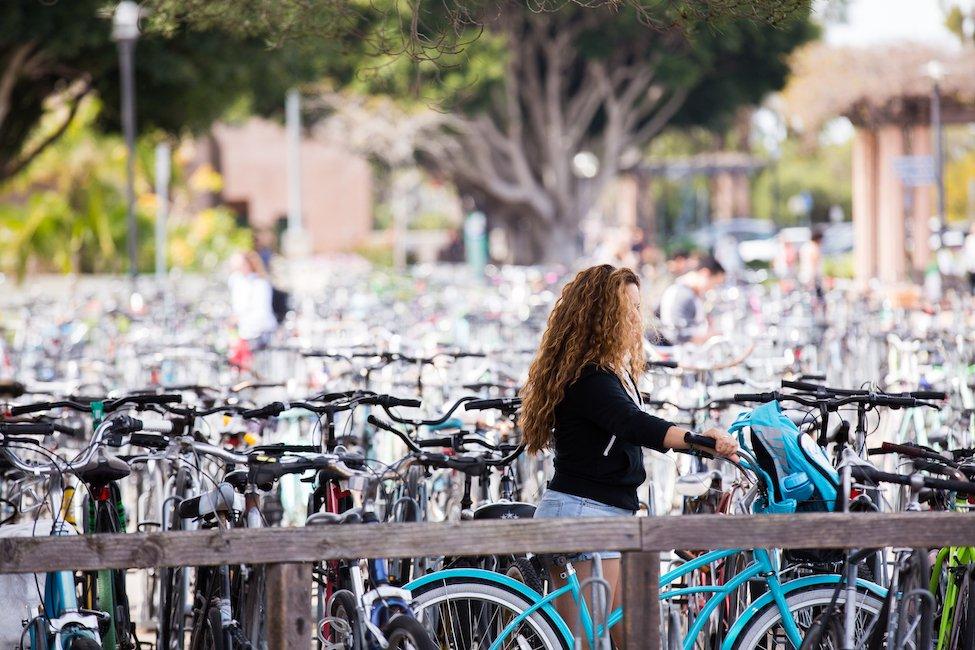 UC Santa Barbara International Programs  gallery image7
